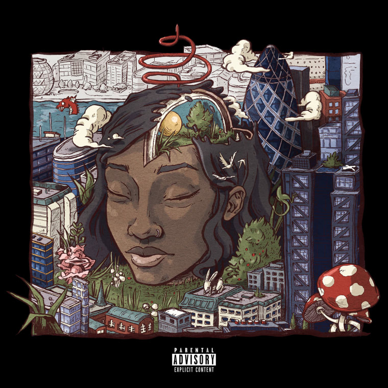 little-simz-picture-perfect