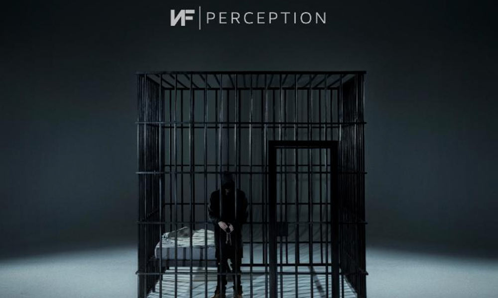 nf-perception-video